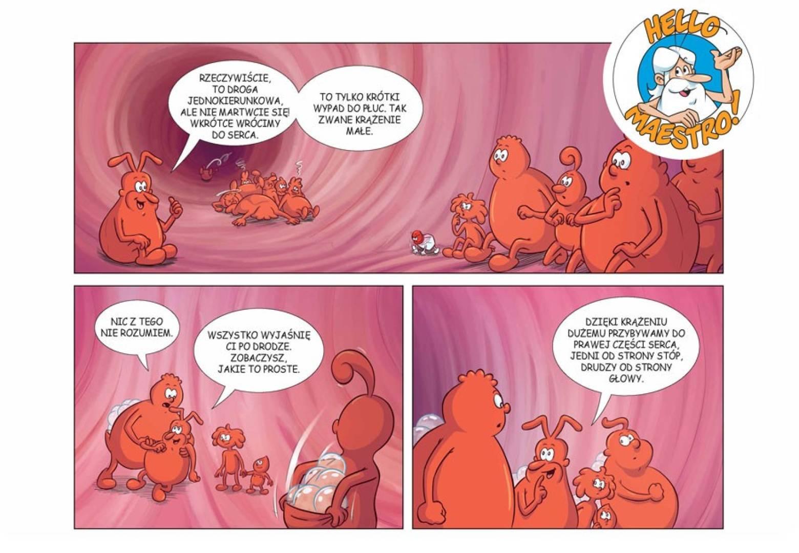 Komiks Było sobie życie, część 1 z DVD