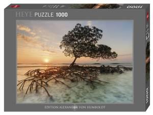 Puzzle 1000 elementów - Namorzyn o wschodzie słońca